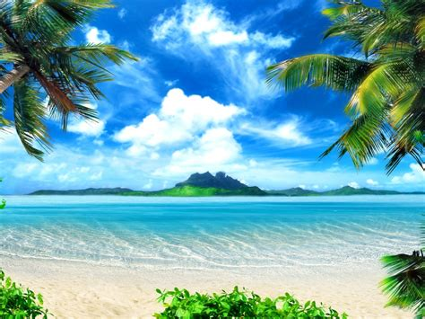 Wallpapers Palm Trees, Sea, Island, Nature, Morning