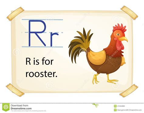 A Letter R For Rooster Stock Vector - Image: 47454983