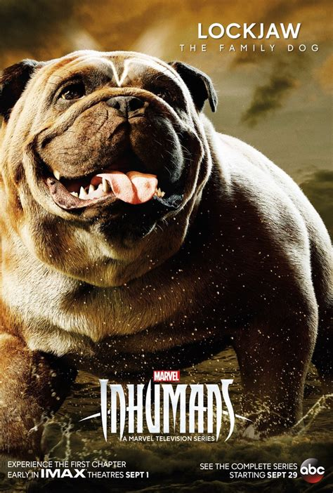 """[TV SERIES] - """"INHUMANS"""" New character posters including"""